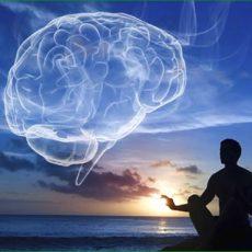 La neurodiversité : une utopie qui masque la souffrance?
